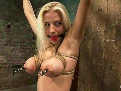 Stunning Haley Cummings Gets Tortured In Hot Bdsm Video