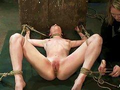 Tied Up Skinny Girl Sucks A Cock And Licks Balls