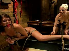 Cassandra Nix Gets Punished And Fucked Hard By Lorelei Lee