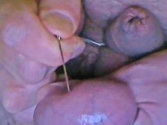 Safety Pin Through The Testicle