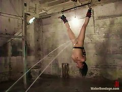 Lesbian Freaks Get Creative When Torturing And Humiliating A Dyke!