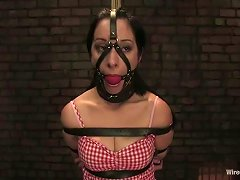 January Seraph Getting Dominated And Toyed By Maitresse Madeline In Bdsm