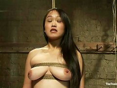 Lusty Asian Chick And That European Babe Are Getting Abused
