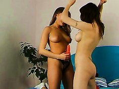 The Cat Fight Of Maya And Molly Turns Into Lesbian Sex - Molly D,maja A
