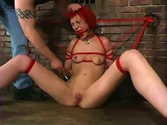 Kory Vixen Moans Loudly While Getting Her Cunt Toyed In Bdsm Scene